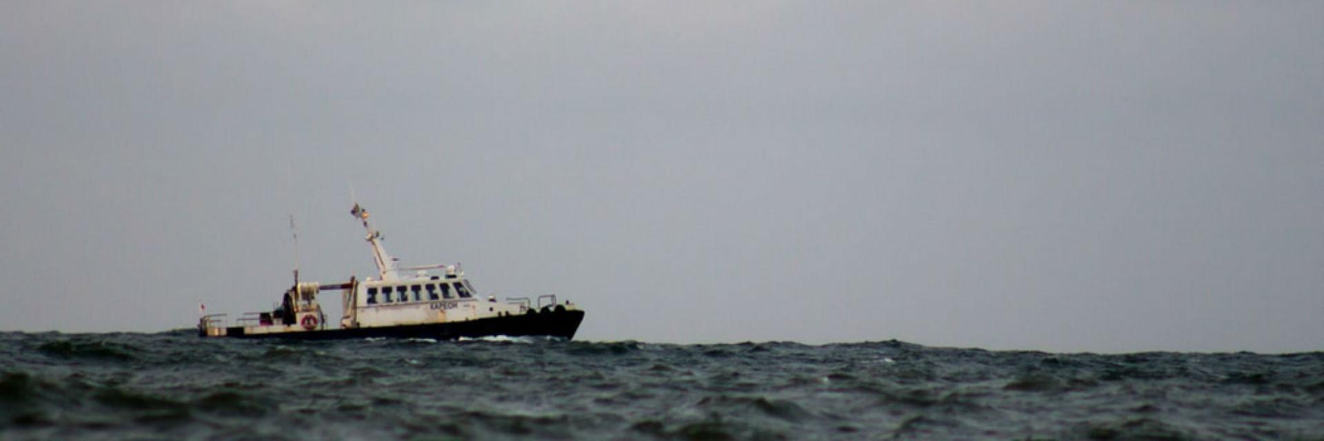 Barco atún